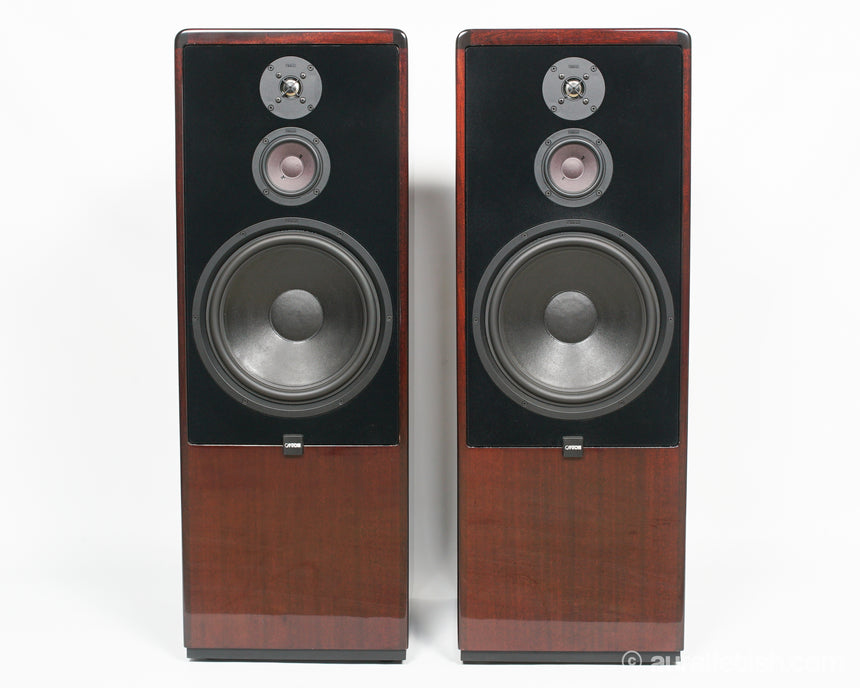 CANTON CT-2000 // TOWER SPEAKERS / MAHOGANY / ORIGINAL BOXES