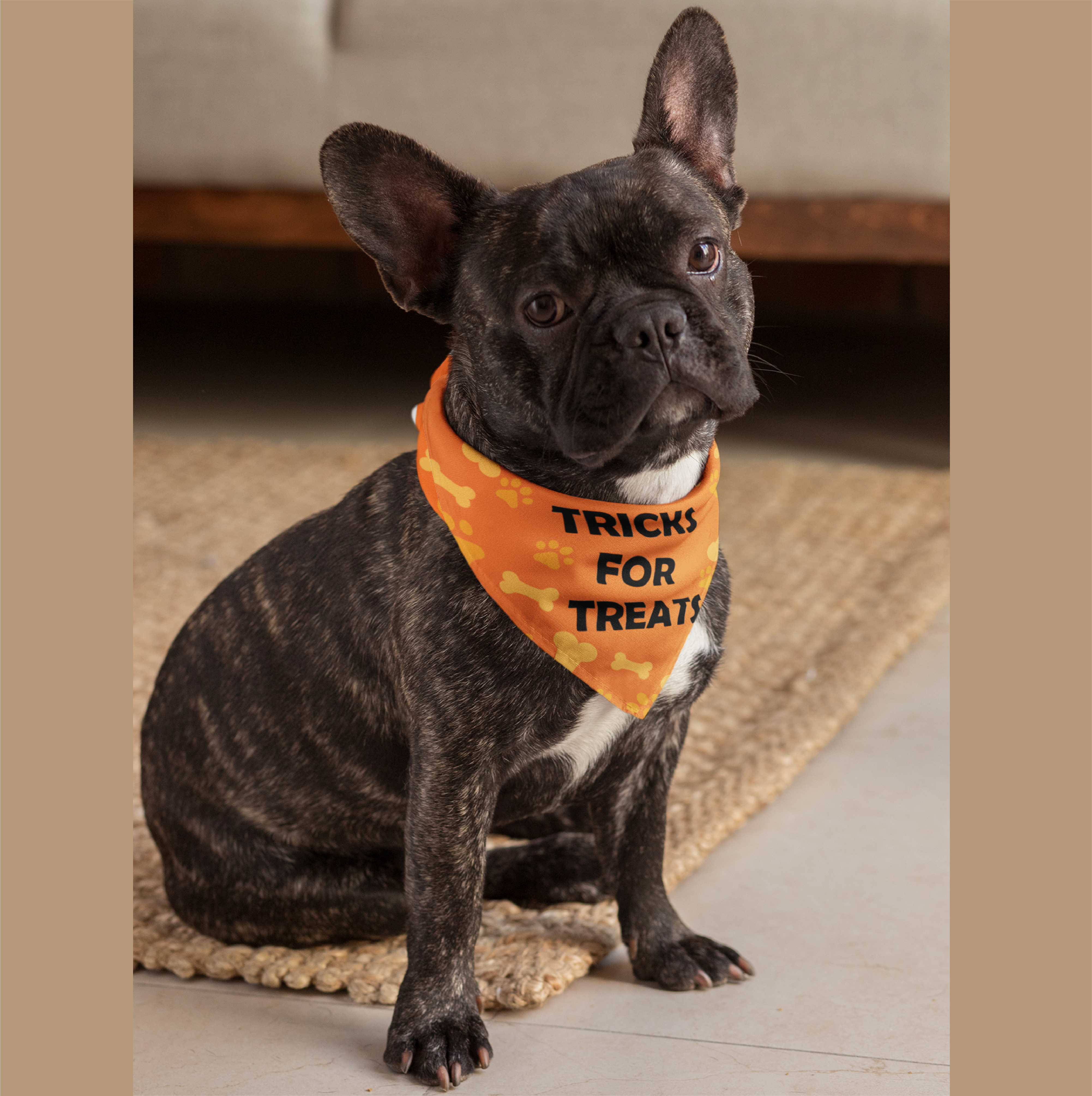 Pet Bandana Collar Tricks for Treats