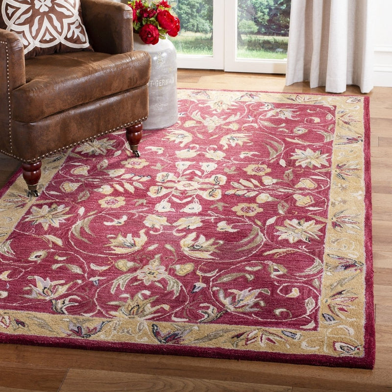Safavieh Rugs Anatolia AN526A Burgundy | Gold