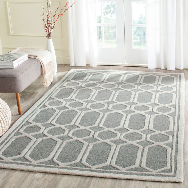 Safavieh Rugs Cambridge CAM139D Silver | Ivory