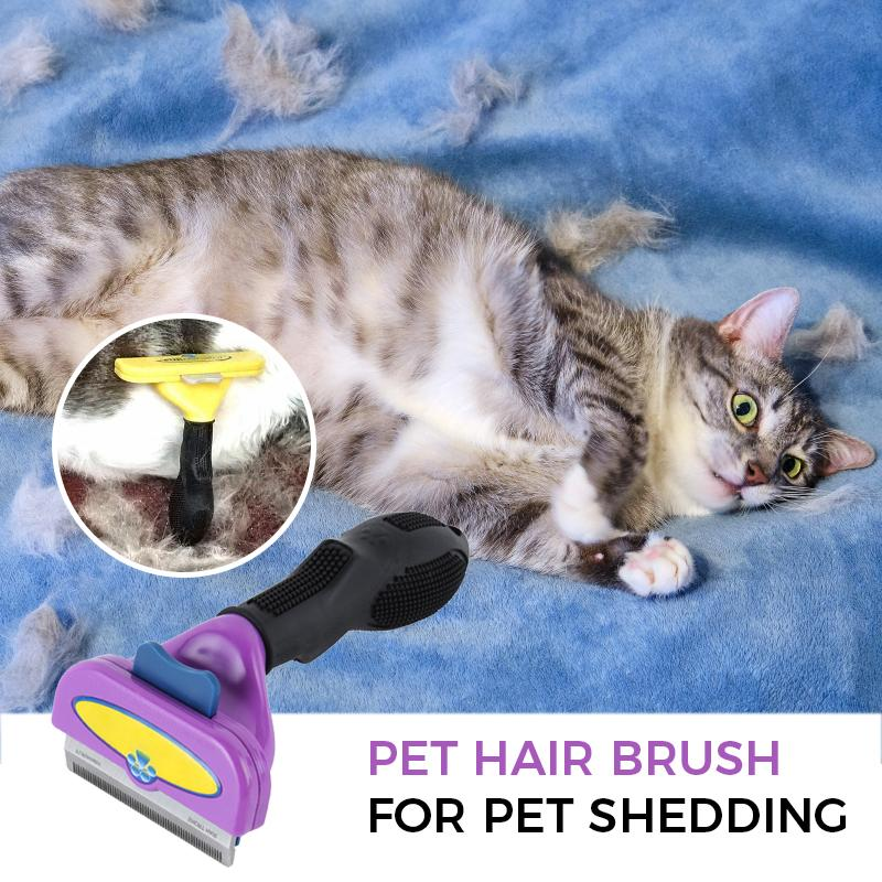 Pet Hair Brush For Pet Shedding