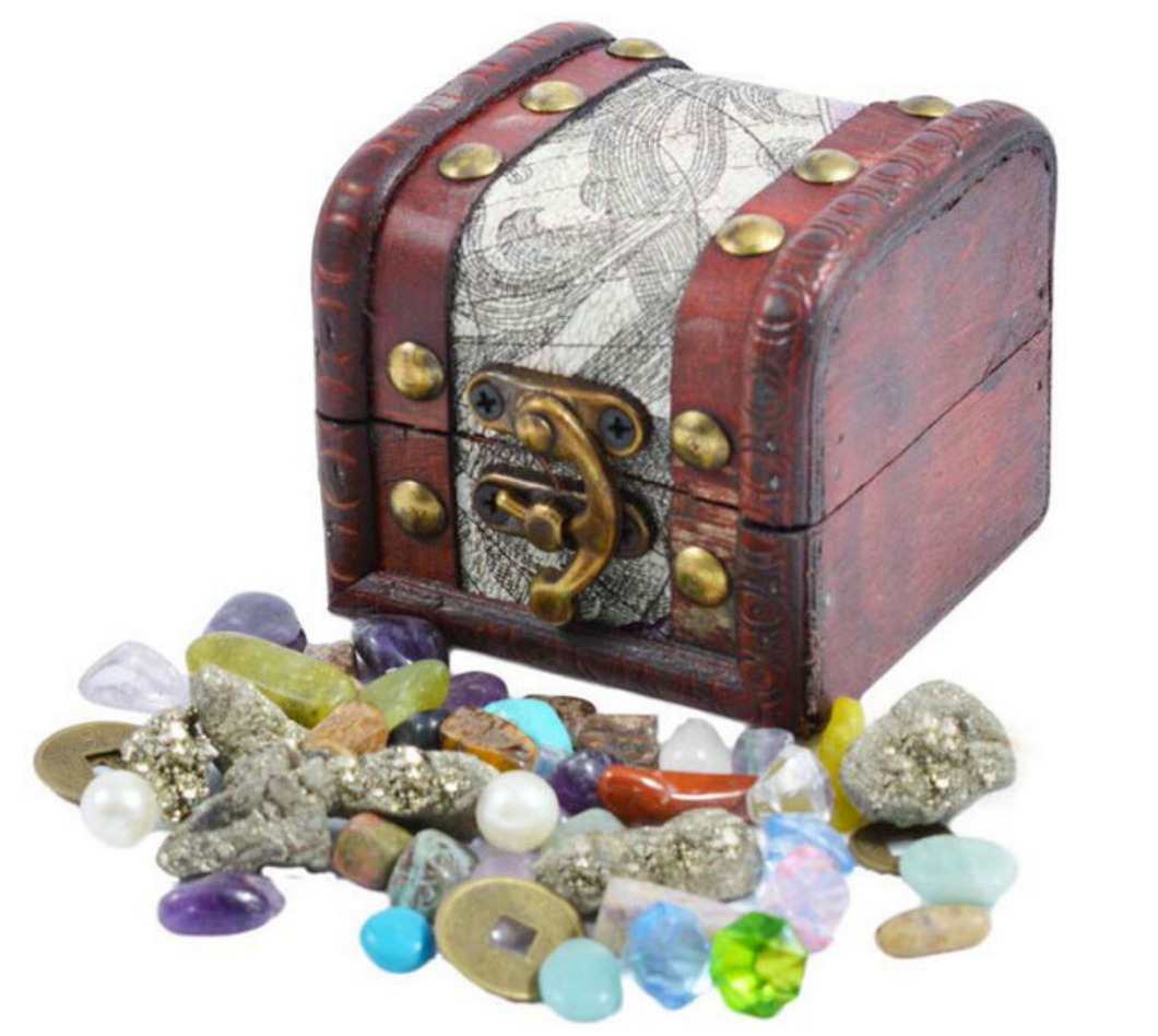 Pirates Treasure Chest - British Fossils