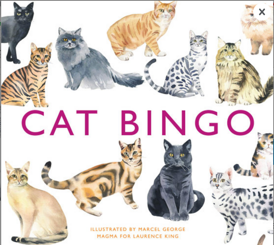 Cat Bingo - Magma - Laurence King