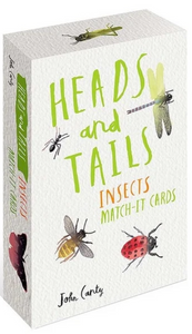 Heads & Tails Insect Match It