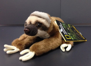 National Geographic Baby Sloth Plush Toy