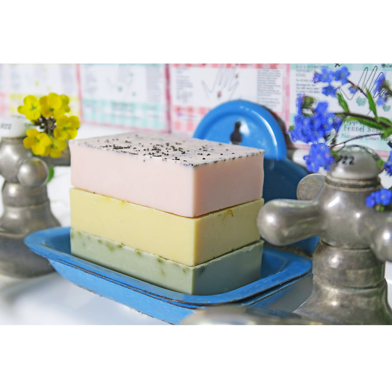 Peppermint and Fennel Soap - Andrea Garland