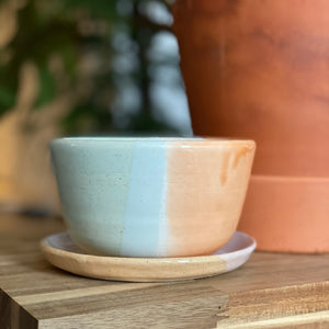 Small Planter with Separate Drip Plate