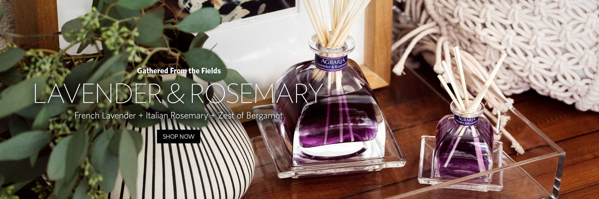 Lavender Rosemary Diffusers