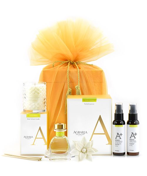 Our Favorite Petites Gift Set