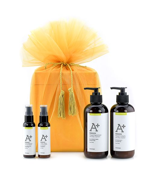 Healthy Hands at Home + On The Go Gift Set