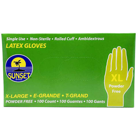 Latex Gloves X-Large 100 ct. Powder Free