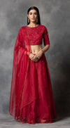 Tonal Embroidered Lehenga Set - Red