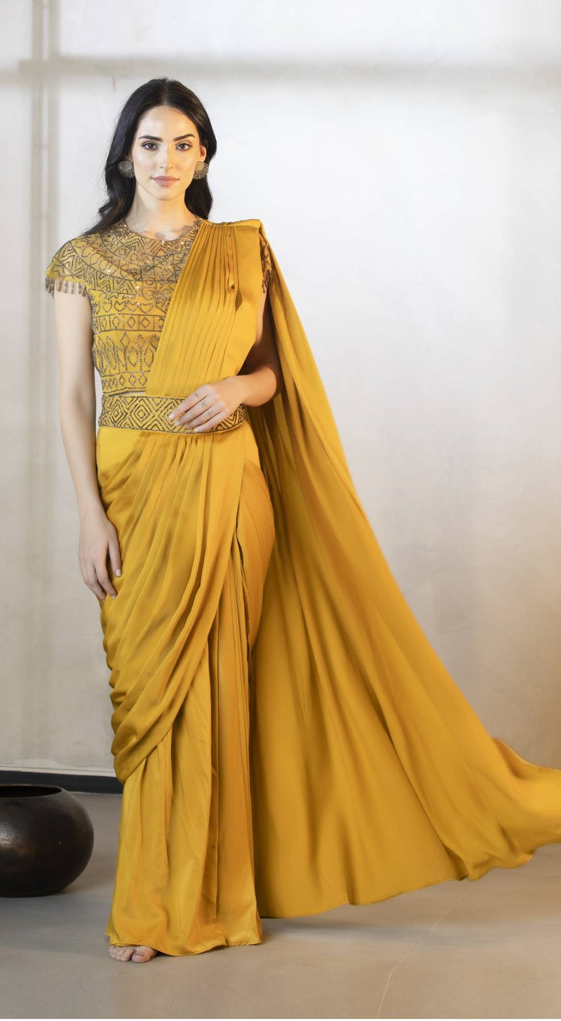 Saree with pre stitched pleats and pallo with embroidered blouse