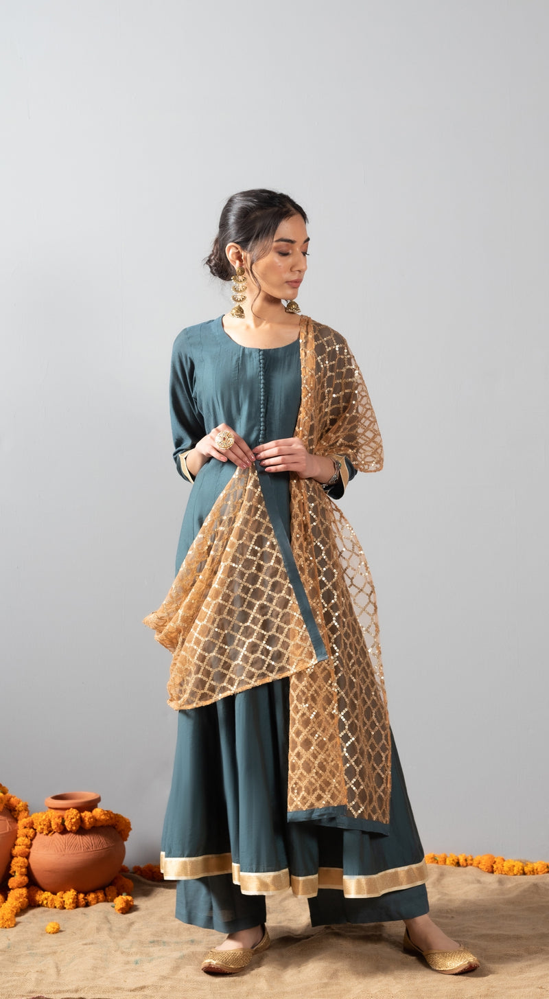 Chanderi anarkali with banarasi border and sequins net dupatta