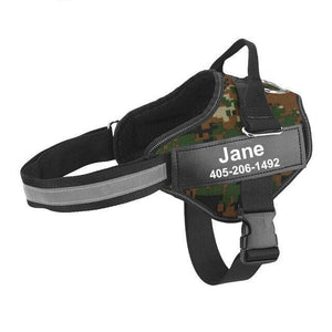 PERSONALIZED SAFE-HARNESS™  PROMOTION 2 DAYS
