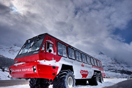 Columbia Icefields Parkway Bus Tour