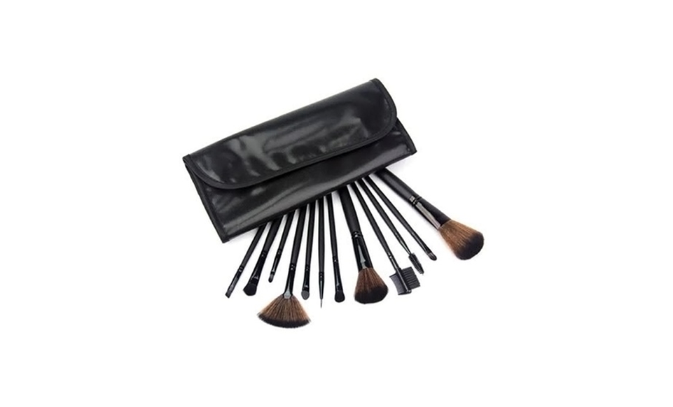 12 Piece Professional Black Brush Set