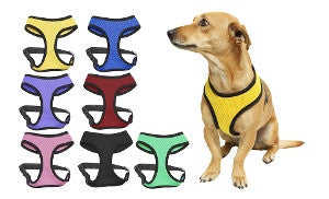 2 Pack- Comfortable Sport Dog Harness