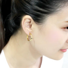 Load image into Gallery viewer, LO4681 - Gold Brass Earrings with No Stone