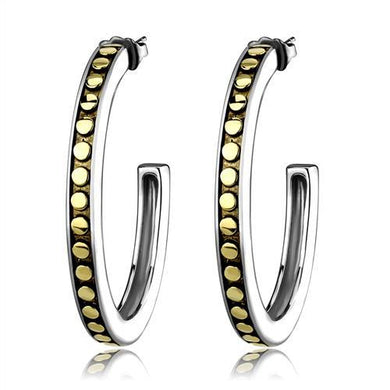 TK2891 - Two-Tone IP Gold (Ion Plating) Stainless Steel Earrings with Epoxy  in Jet