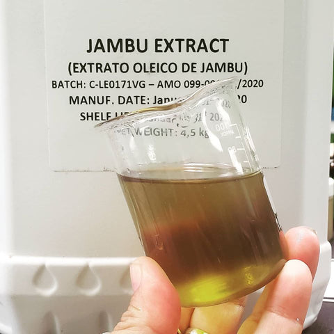 Jambu Oleic Extract - TRY IT FREE paying for shipping.