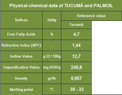 Tucuma Butter -  Vegetable silicone, hair care, antioxidant. - Rainforest Chica  - 3