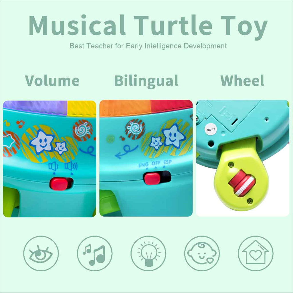 Musical Turtle Toy English & Spanish Learning with Lights and Sounds