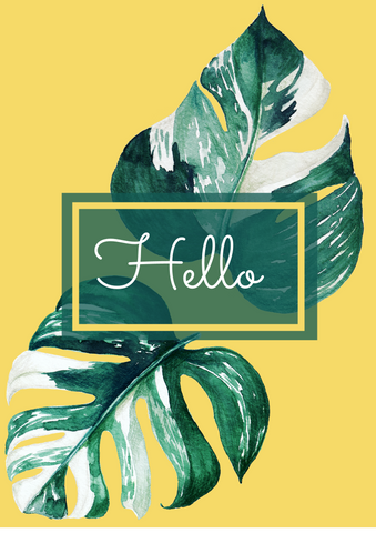 'Hello' cheeseplant leaf greetings card