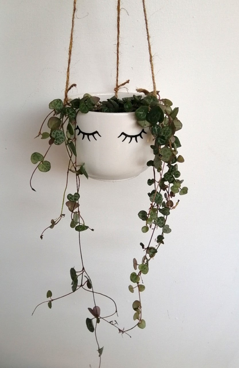 Cute eyes shut hanging planter
