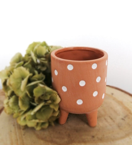Cute spotted pot with legs