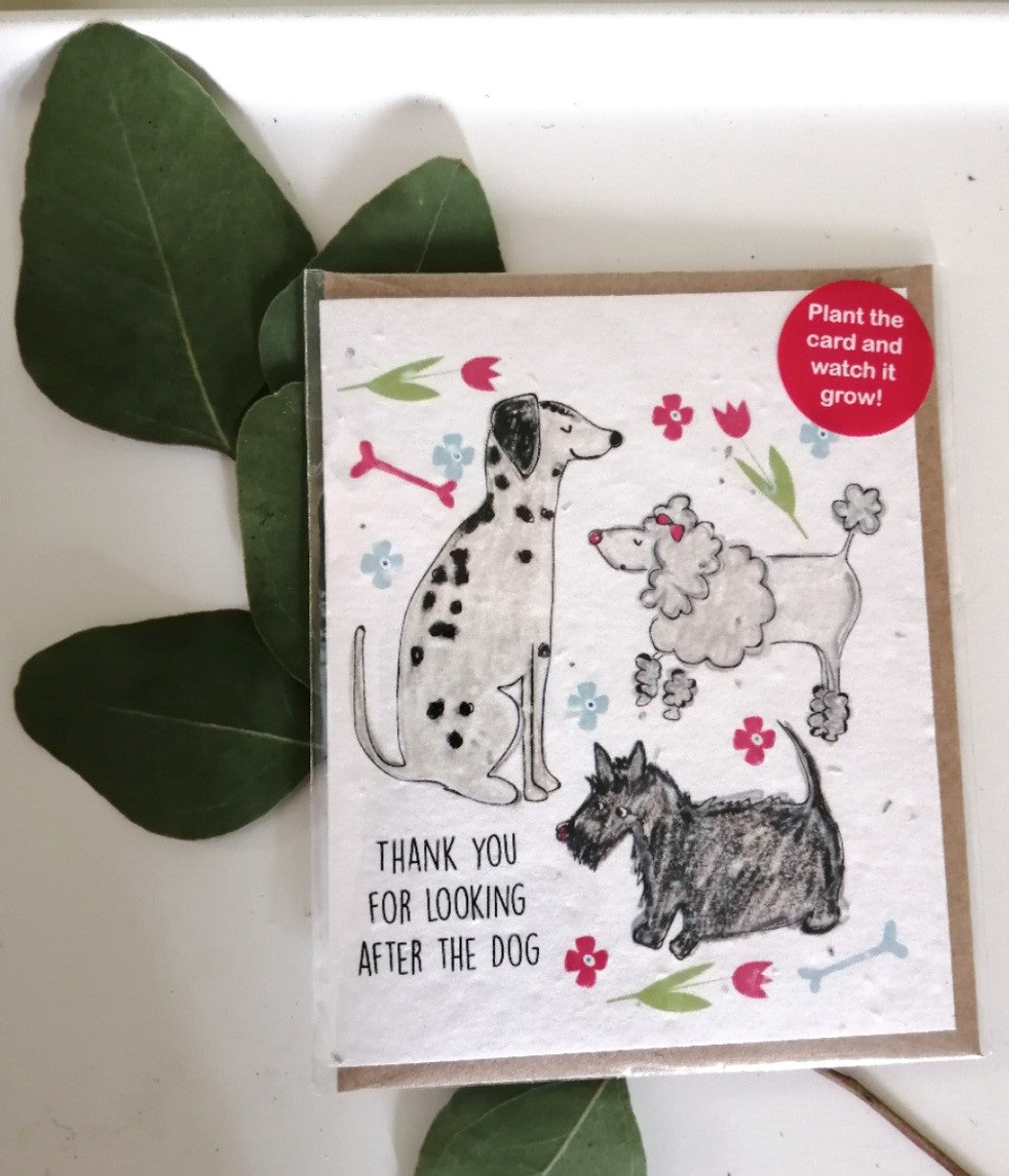 'Thank you for looking after the dog' seed card