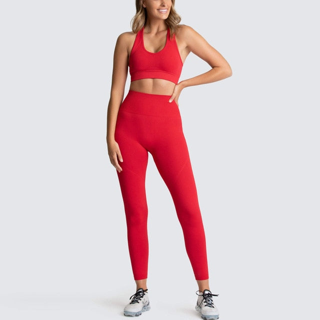 Nylon Seamless Gym 2 Piece Set