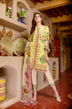 Load image into Gallery viewer, Luxury Emb Lawn Vol 1 3Piece Ar#207