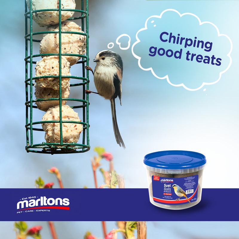 NEW Marltons Suet Balls For Wild Birds