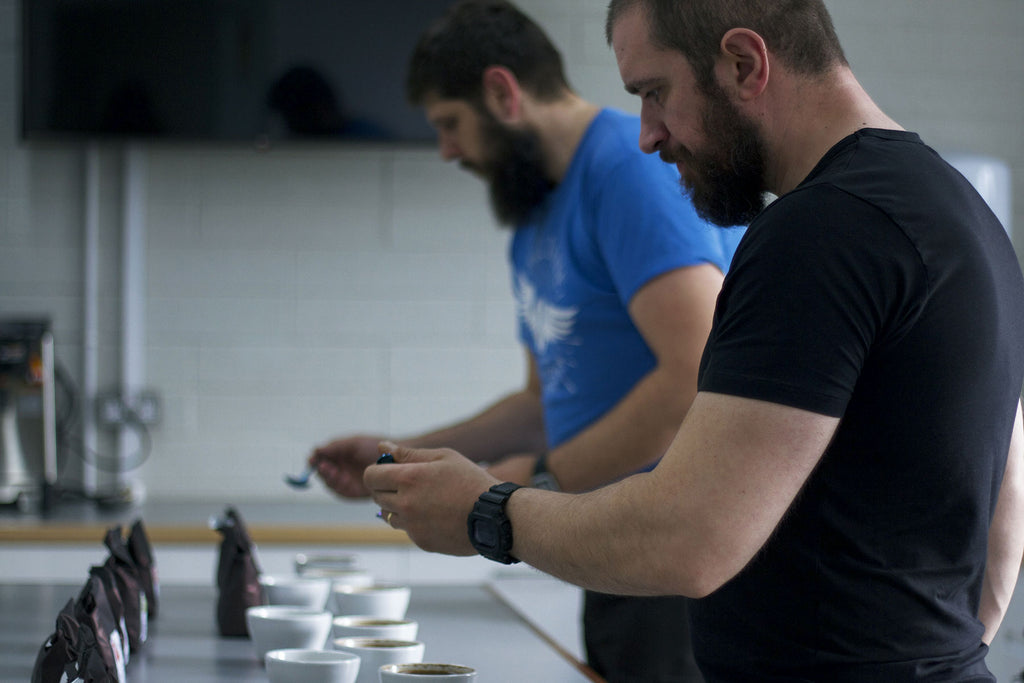 Bell Lane Cupping