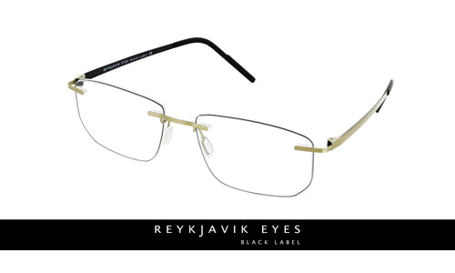 Reykjavik Andres men's gold black glass frames