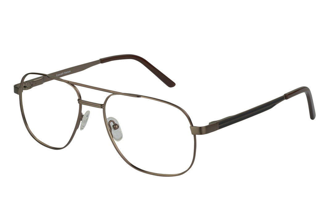 Titanium Cameron men's bronze glass frames