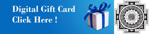 https://www.gifteasycards.com/Customer_Portal/?store=Lucas%20Nault%20Hair%20Studio