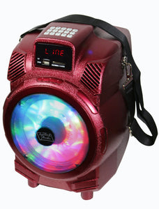 "Fully Amplified Portable 1200 Watts Peak Power 6.5"" Speaker with led light"