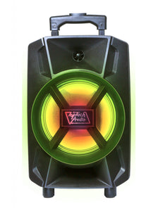 "Fully Amplified Portable 1500 Watts Peak Power 8"" Speaker with LED LIGHT"