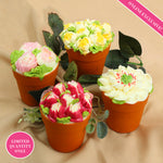Flower Potted Cakes