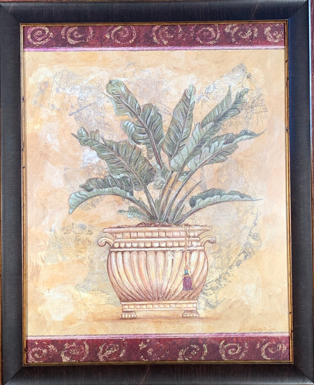 Potted Fern Framed Print
