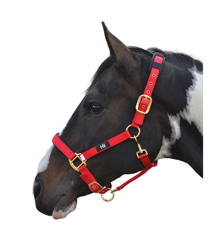 Hy Deluxe Padded Headcollar Red
