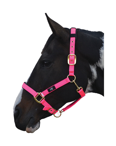 Hy Deluxe Padded Headcollar Hot Pink