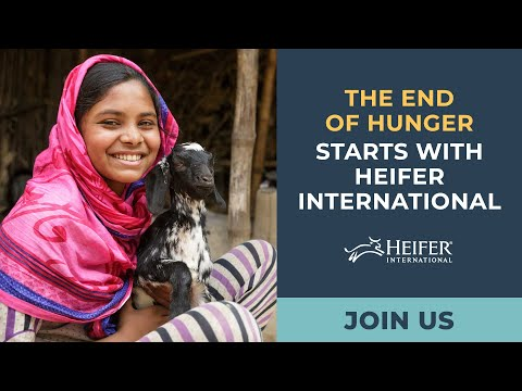 Heifer USA and International
