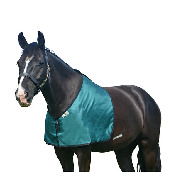 Bossy's Bibs Rug Protection Green