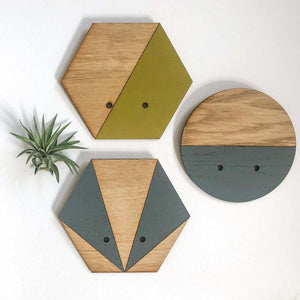 Chartreuse Hexagon Wall Hanging Planter for Air Plants Display
