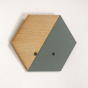 Grey Hexagon Wall Hanging Planter for Air Plants Display /