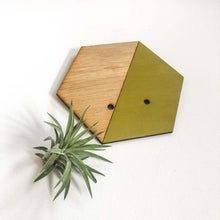 Load image into Gallery viewer, Chartreuse Hexagon Wall Hanging Planter for Air Plants Display