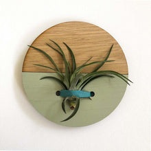 Load image into Gallery viewer, Sage Round Wall Hanging Planter for Air Plants Display